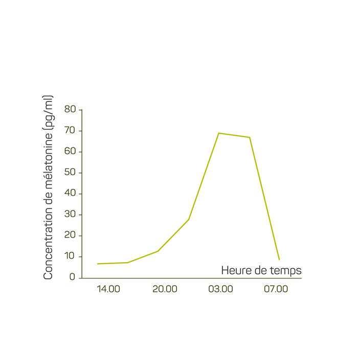 Evolution de la concentration en mélatonine dans le sang pendant la nuit